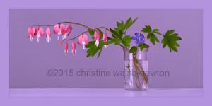 Flowers 1 Final B-web